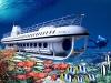 [괌] '신비한 바닷속 세계' 세계적으로 유명한 아틀란티스잠수함 탐험