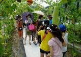 [지역축제] 건강과 힐링의 추억 '함양 여주 항노화 축제