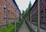 [폴란드여행] 어두운 역사의 현장, 아우슈비츠