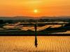 [일본]후쿠시마현 국제교류협회, 외국인 거주자 대상 사진 콘테스트 수상작 발표