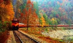 [미국] 가장 아름다운 미국의 풍경을 볼 수 있는 8개 철도는?