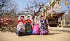 [용인] 한국민속촌, 꽃향기 가득한 봄축제 '비밀의 화원' 공개...4월 13일~6월 23일