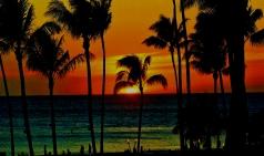 [미국] 프린세스 크루즈...미서부, 멕시코, 하와이도 크루즈로 여행하세요