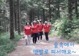 워크앤런, 27일 폭염 탈출  대관령 숲속 맨발걷기 행사 개최