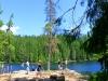 [독일] 바이에른 국립공원 '유럽의 녹색 지붕'에 가다 ...①빙하시대의 유물 아르베르 호수