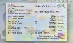 영국, 캐나다, 호주 등 33개국서 운전 가능한 '영문 운전면허증' 16일부터 발급