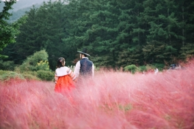 아침고요수목원, 한복 이벤트 '한복여행' 개최...11월 30일까지