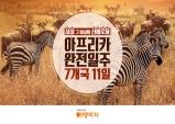 NHN여행박사, '아프리카 완전 일주 7개국 11일' 상품 출시