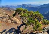 [대한민국 화첩산행 100] ⑯계룡산(874m)...대한민국 두 번째 국립공원, 정감록의 도참설로 유명한 산