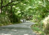 [해남군] 두륜산 권역 길 정원 조성사업 테마별 공간으로 탈바꿈