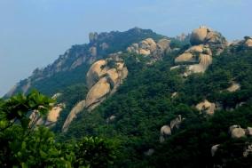 서울시, 여름철 계곡·유원지 주변 불법행위 특별단속