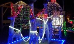 [원주] 제6회 고니골빛축제...LED불빛 등 이용한 테마축제, 눈썰매장 운영