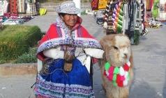 [전혜진의 좌충우돌 세계여행] #34. 페루 아레키파 - 나는 마추픽추보다 콜카캐년이 제일 좋아요