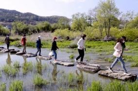 [합천군] '7가지 색깔 걷기 챌린지' 18일까지 연장 운영