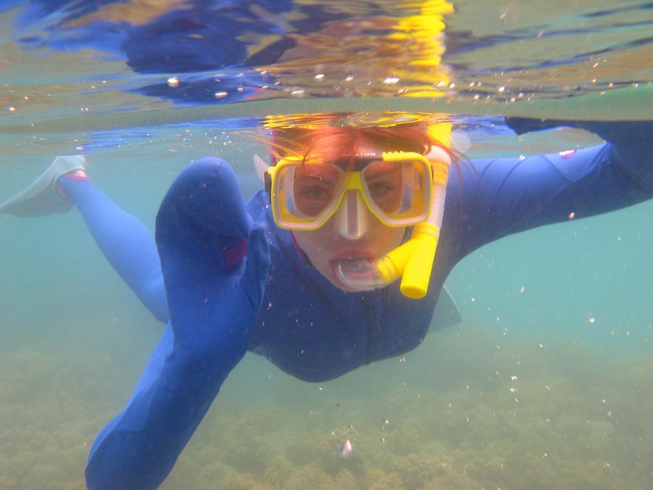 diver-179434_1280.jpg